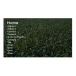 Campo de maíz tarjeta de visita