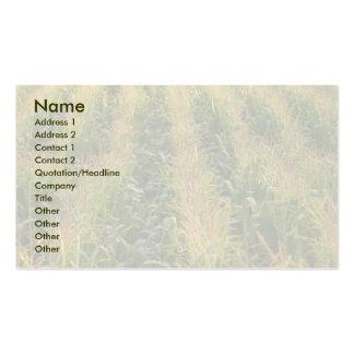 Campo de maíz tarjetas de visita