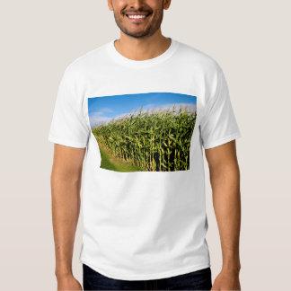 campo de maíz y cielo poleras
