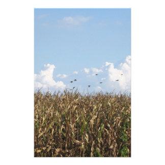 Campo de maíz y tragos papeleria de diseño