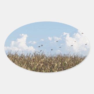 Campo de maíz y tragos pegatina ovalada