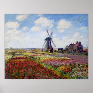 Campo de Monet de tulipanes con el poster del moli Póster