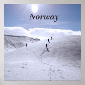 Campo de Noruega Póster