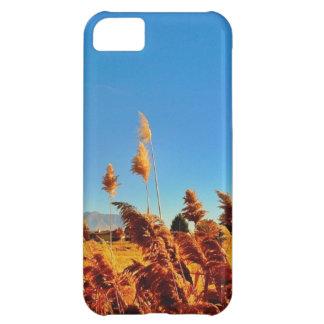 Campo de oro del país, skys azules funda para iPhone 5C