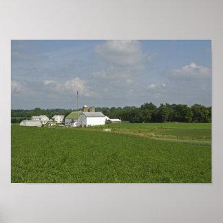 Campo de Pennsylvania Póster