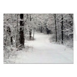 Campo de Snowcrusted en Vermont IL Tarjeta Pequeña