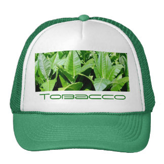 Campo de tabaco gorros bordados