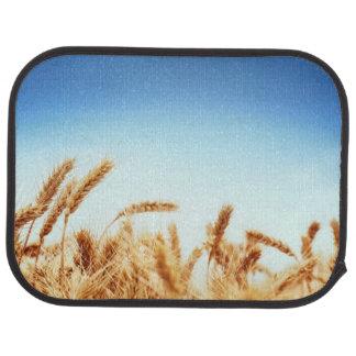 Campo de trigo contra el cielo azul alfombrilla de auto
