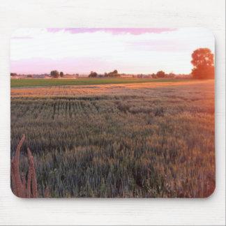 Campo de trigo de Idaho Alfombrillas De Raton