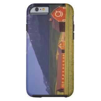 Campo de trigo en el valle de Wallowa, apenas Funda Resistente iPhone 6