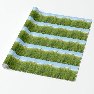 Campo de trigo en primavera/Weizenfeld Papel De Regalo