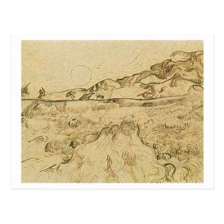 Campo de trigo incluido con el segador, Vincent Tarjeta Postal