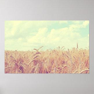 Campo de trigo posters