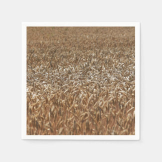 Campo de trigo servilletas desechables