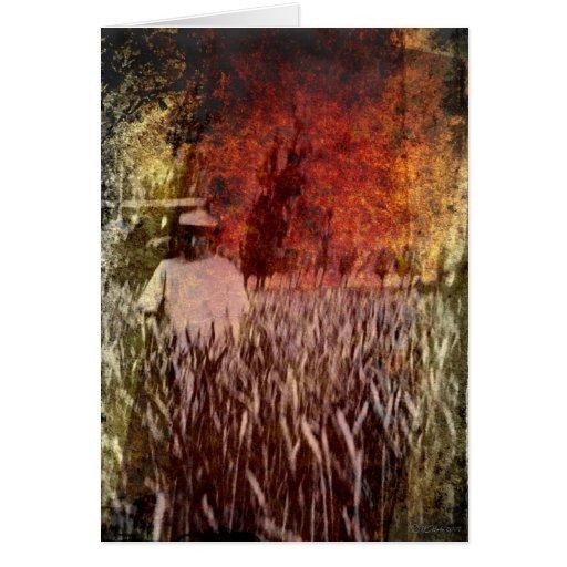 Campo de trigo tarjeta de felicitación