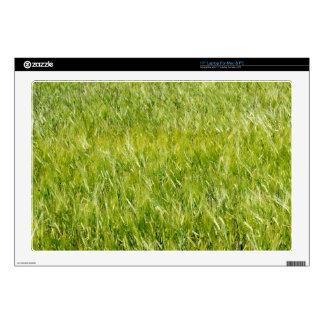 Campo de trigo verde calcomanía para portátil