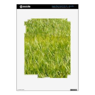 Campo de trigo verde iPad 3 pegatinas skins