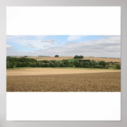 Campo de trigo, Wiltshire Póster