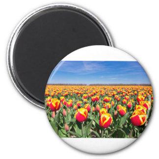 Campo de tulipanes amarillos rojos con el cielo imán redondo 5 cm