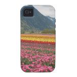 Campo de tulipanes - festival del tulipán - foto d vibe iPhone 4 carcasas