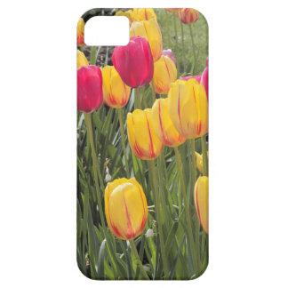 Campo de tulipanes funda para iPhone SE/5/5s