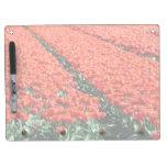 Campo de tulipanes tableros blancos