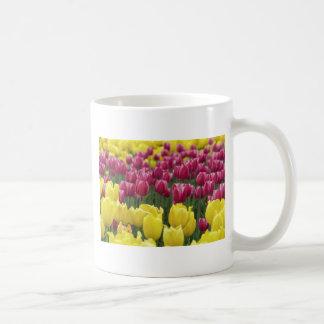Campo de tulipanes tazas de café