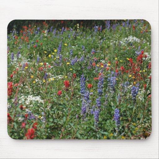Campo de Wildflowers Alfombrillas De Ratones
