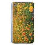 Campo del amarillo, el condado de Marion, Oregon iPod Touch Case-Mate Carcasas