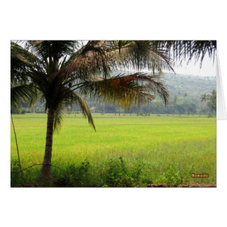 Campo del arroz tarjeta de felicitación