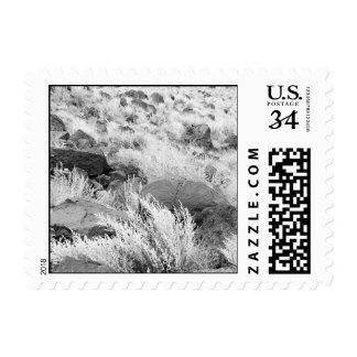 Campo del basalto - pequeño sello