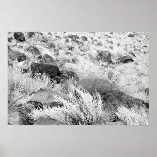 Campo del basalto póster