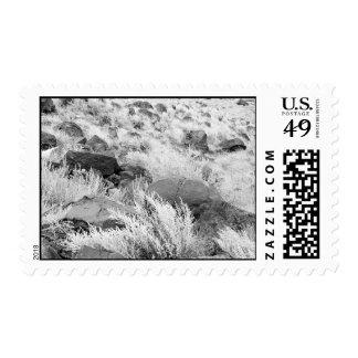 Campo del basalto - sello medio