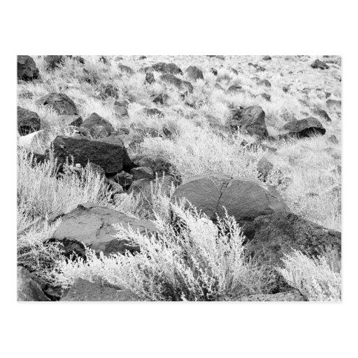 Campo del basalto tarjeta postal