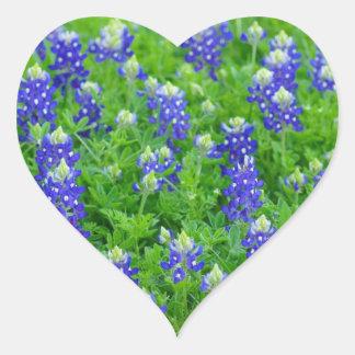 Campo del Bluebonnet Calcomanía Corazón