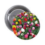 Campo del botón colorido de los tulipanes pin