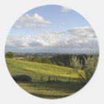 campo del girasol etiqueta redonda