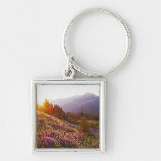 Campo del lupine y de las montañas olímpicas en llavero personalizado