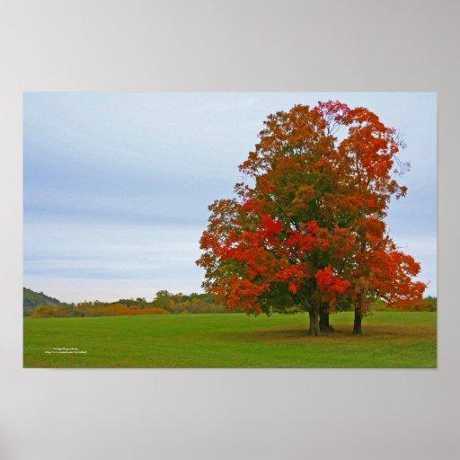 Campo del otoño póster
