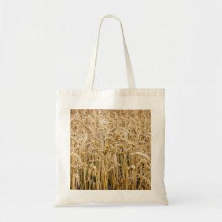 Campo del trigo granos de oro