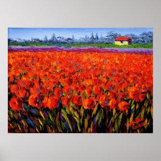 Campo del tulipán de Holanda Impresiones