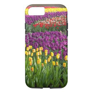 Campo del tulipán funda iPhone 7
