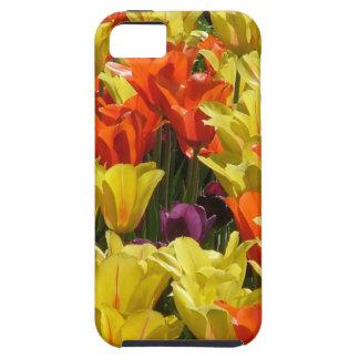 Campo del tulipán funda para iPhone SE/5/5s