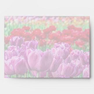 Campo del tulipán sobres