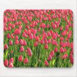 Campo del tulipán tapetes de raton