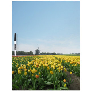 Campo del tulipán y tablero seco del borrado del m pizarras blancas de calidad