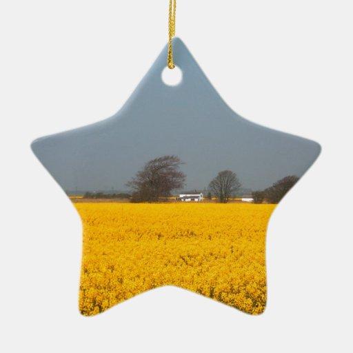 Campo en la floración y la cabaña del país adorno navideño de cerámica en forma de estrella