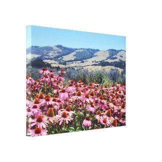 Campo escénico de las flores rosadas del cono impresiones en lona