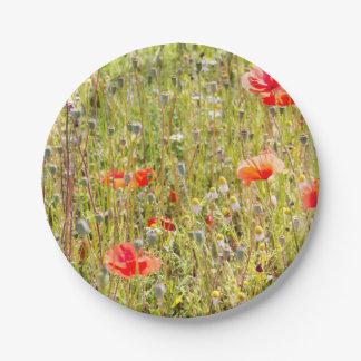 Campo floral rojo de las amapolas y de los plato de papel de 7 pulgadas