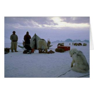 Campo groenlandés tarjeta de felicitación